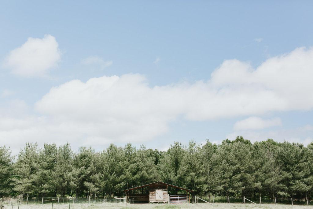 colbyandlauren_northcarolinawedding-1